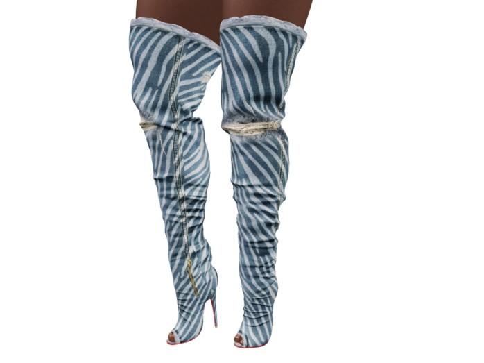 zebra boot